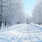 Winter 2016 Newsletter